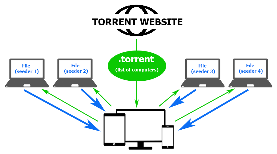 토렌트 웹 사이트